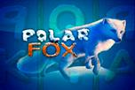 играть в игровой автомат Polar Fox